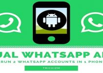 Dual Whatsapp APK